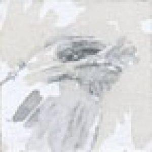 1521_album