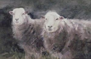 'Beatrix Potter's Herdwicks' 2007. watercolour. Sold