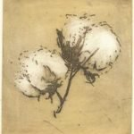 cotton-pairs-i-2002-colour-etching-7-5x8cm-christine-porter