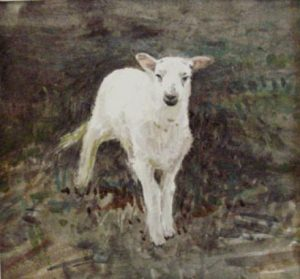 ' lamb, looking' 2007 watercolour. Sold