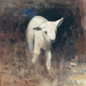 'Wee Lamb' 2007 watercolour. Sold.