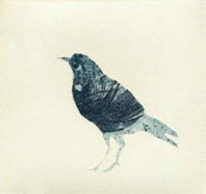 'Bird' 2010 etching 6.8x6.8cm