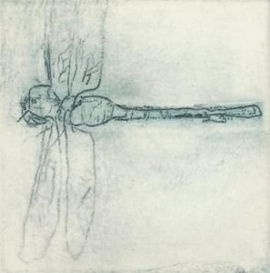 'Wind drinker' 2010 etching 6x6cm