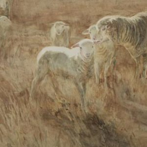 "Christine Porter ""Lamb"" watercolour. A large lamb with a ewe and another lamb. Strong sunlight, yellow grass."