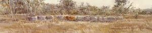 mob-2009-watercolour-on-paper-20x20cm-christine-porter-private-collection