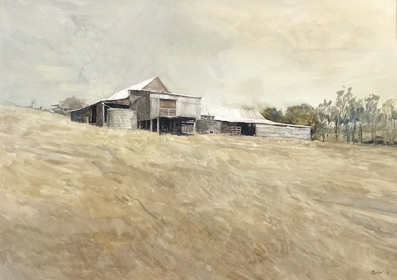 Watercolour painting by Christine Porter. Showing the exterior of a timber shearing shed. With corruagated iron wall and corrugated iron roof. Looking up at shed past grass.