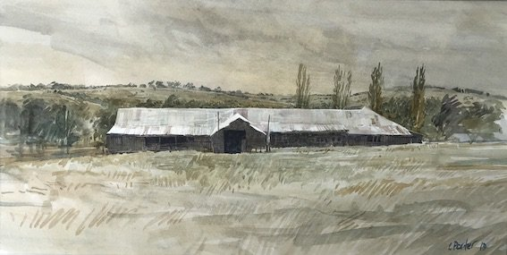 Watercolour painting by Christine Porter. Showing the exterior of a timber shearing shed. With slab walls in shadow and corrugated iron roof. Also poplars behind.