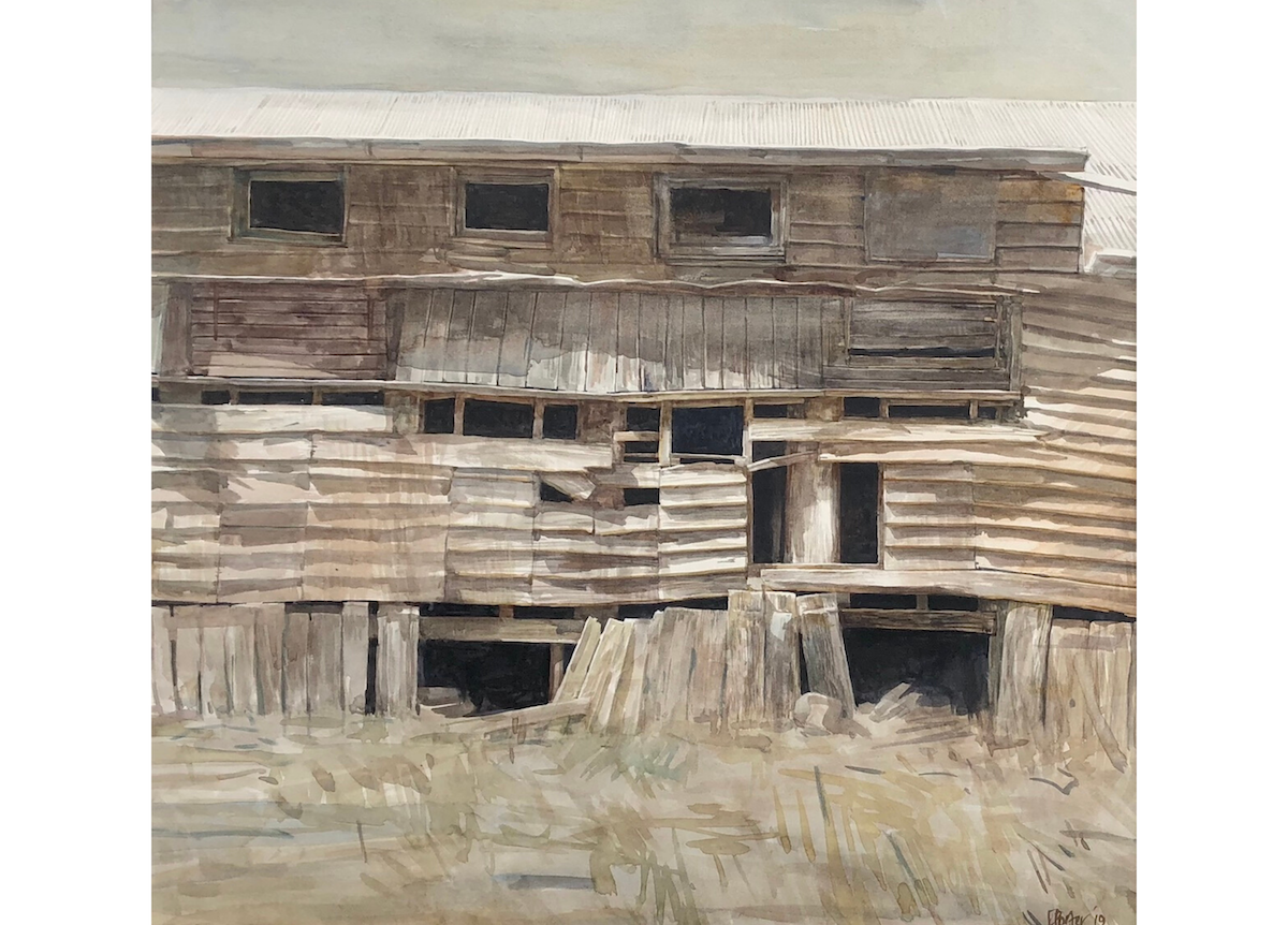 "A watercolour painting by Christine Porter of the shearing shed at ""Boorolong"" near Armidale, showing the exterior timber wall, with dark gaps under and into the shed."