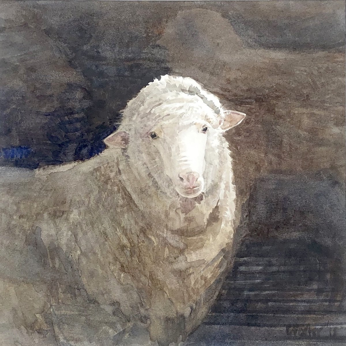 Watercolour painting by Christine Porter showing a single young eye looking at the audience. in the darkness behind her there is vague shapes of other sheep.