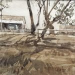 Watercolour painting by Christine Porter showing the end of a shearing shed in the distance, with some tree trunks casting shadow diagonally across the page.