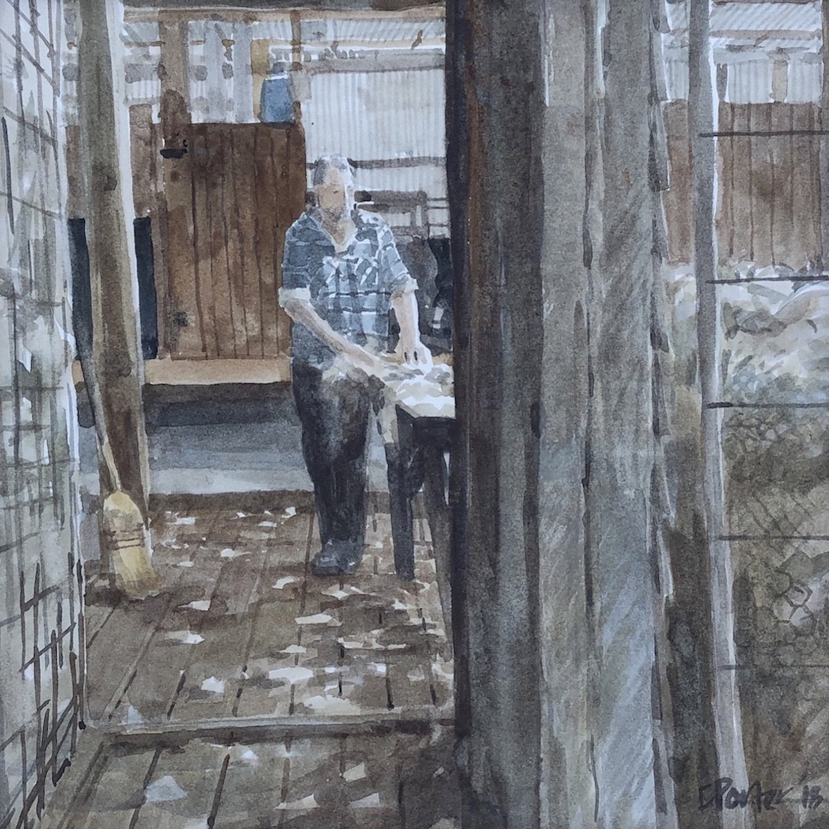 Watercolour painting by Christine Porter showing a man walking beside the wooltable skirting a fleece. behind him is the raised board and we are looking at him from the woolroom, through a bin empty of wool